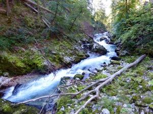 foaming river
